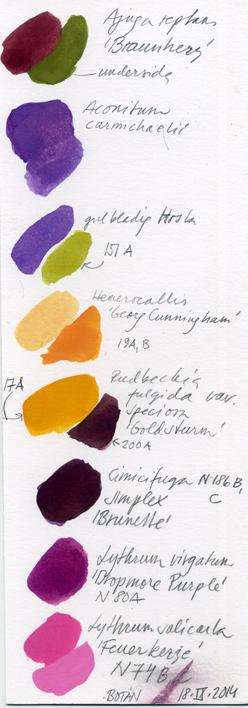 Botaniska färgreg. 2014057